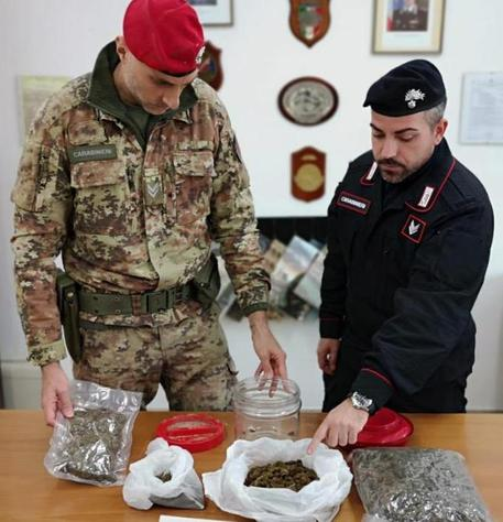 Nascondeva in casa 800 grammi di marijuana, arrestato nel Reggino