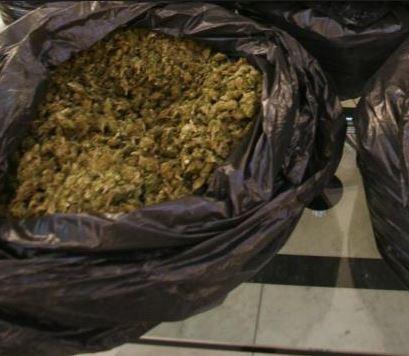 Vittoria, nascondeva in casa 62 chili di marijuana: arrestato