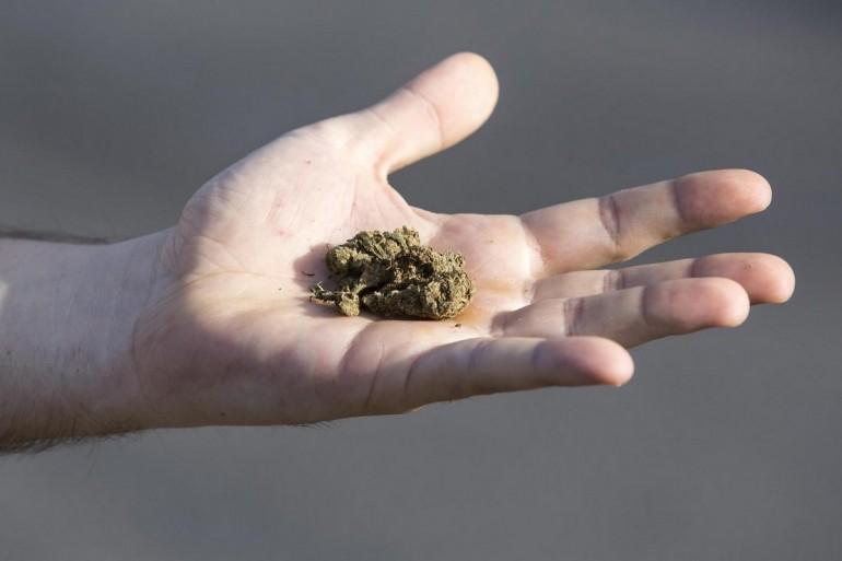 Noto, trovato con marijuana: segnalato un minorenne