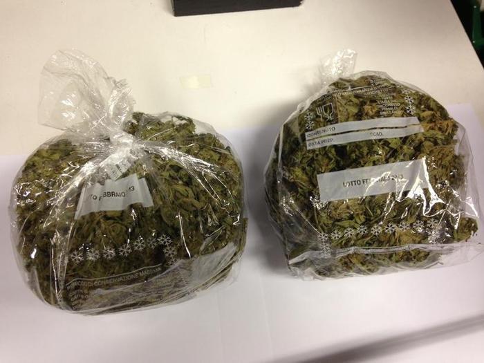 Sequestrata dalla polizia a Crotone 1,7 chilogrammi di marijuana