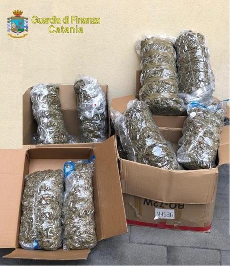 La Finanza sequestra a Palagonia 134 chili di marijuana: un arresto