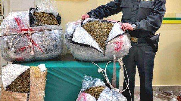 Droga, in auto oltre 57 chili di marijuana: un arresto a Messina