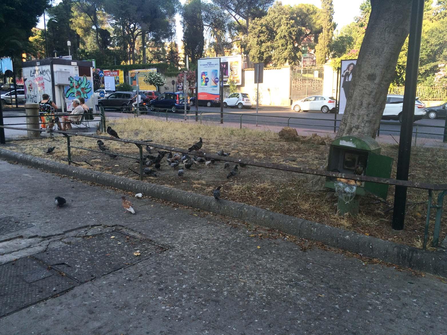 Catania, nuove aree pubbliche affidate a privati per la riqualificazione