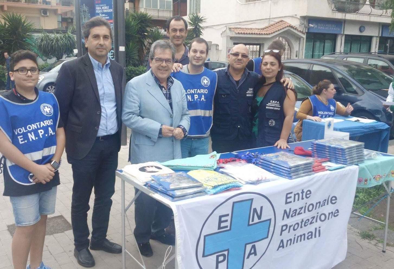 Randagismo a Catania, piazzati 47 microchips in piazza Aldo Moro