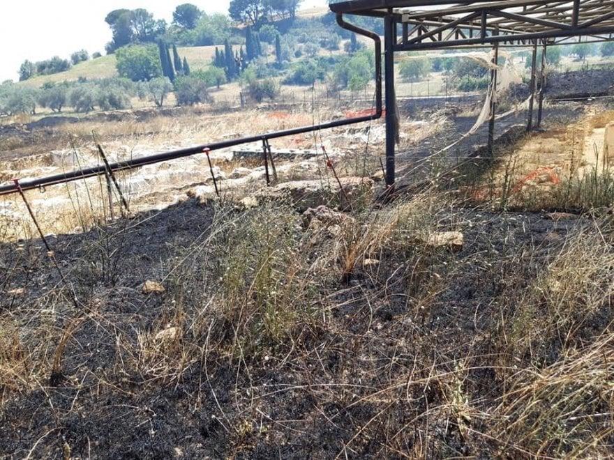Altro incendio a Morgantina, Zanna (Legambiente): Regione assente