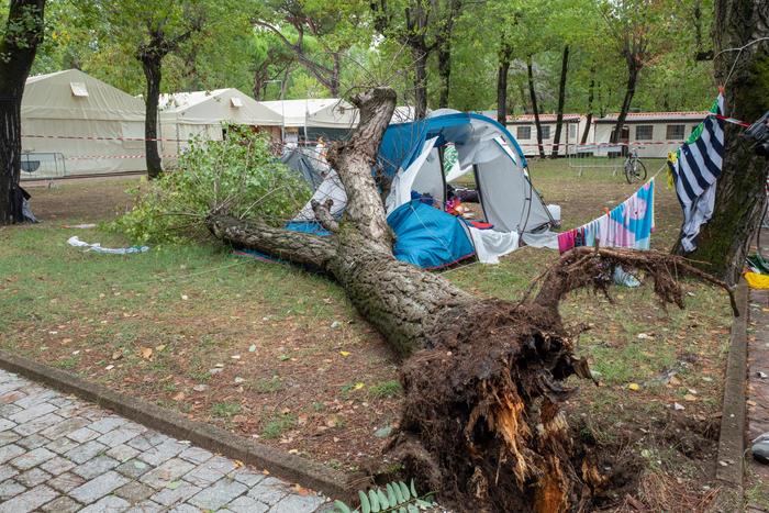 Albero sulla tenda del campeggio: morte due sorelline a Marina di Massa