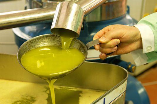 L'olio italiano scende dal podio nella produzione mondiale