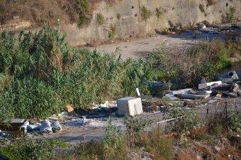 Palermo, pulizia straordinaria sul fiume Oreto