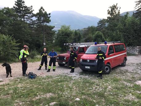 Ferito da un orso in Trentino, governatore ordina la cattura dell'animale