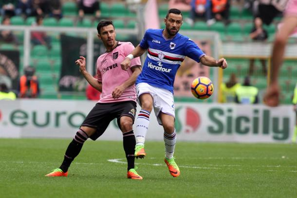 Un'altra beffa per il Palermo, la Sampdoria lo raggiunge al 90' con Quagliarella