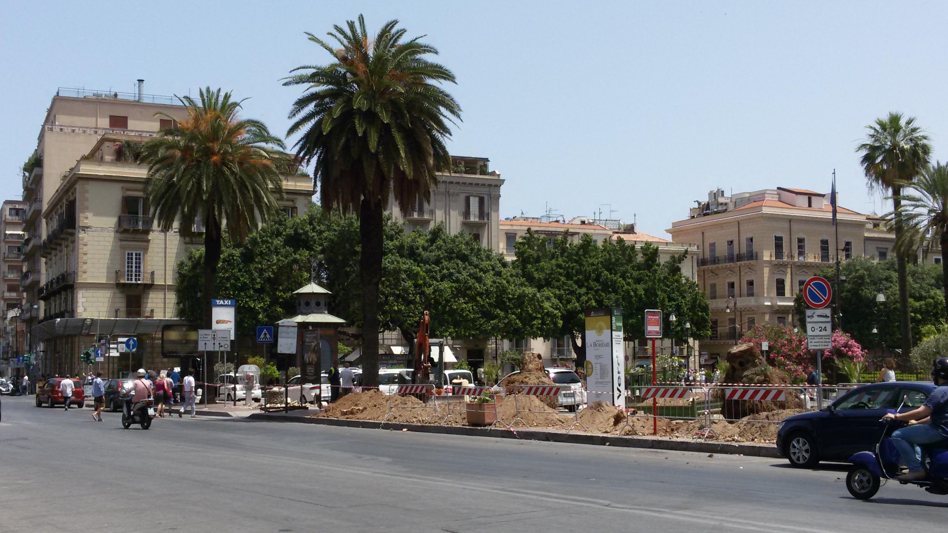 Palermo, piantate nuove palme in piazza Verdi