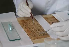 All'Istituto del papiro di Siracusa, contributo della Regione di 84 mila euro