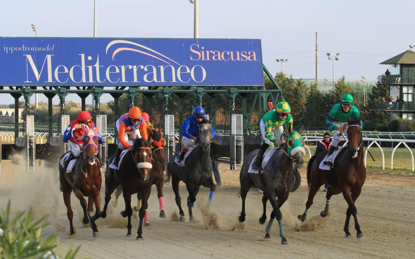 Galoppo a Siracusa, Royal Victory - Dorkel: è sfida nelle condizionate