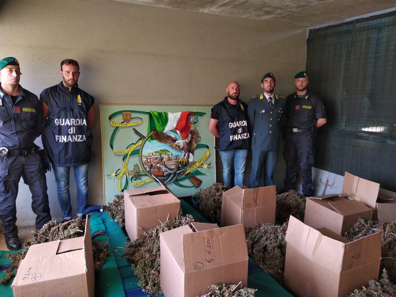 Scoperto un deposito di marijuana nelle campagne di Partinico