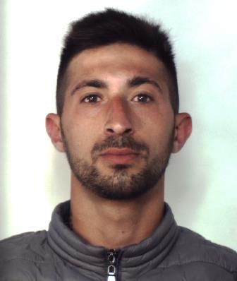 Catania, due pitbull a guardia della droga: in carcere un 23enne