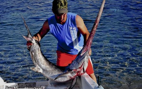 Sette milioni dallo Stato per finanziare la pesca in Sicilia