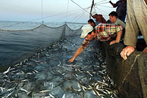 Ai pescatori siciliani di Mazara il Premio del Cittadino europeo