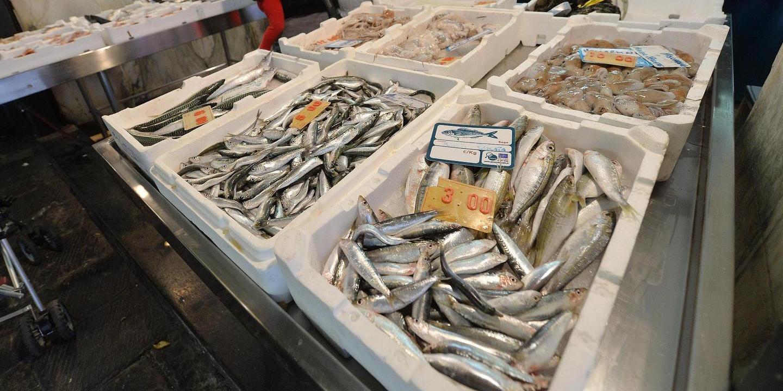 Sequestrati a Ferla tredici chili di prodotti ittici