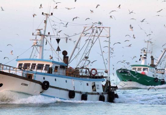 Due pescherecci di Mazara sequestrati da autorità di Tunisi: liberati dopo poche ore