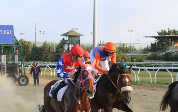 Galoppo a Siracusa, sfida tra Rayos De Sol e Kylach Me If U Can per il Premio La Rossa