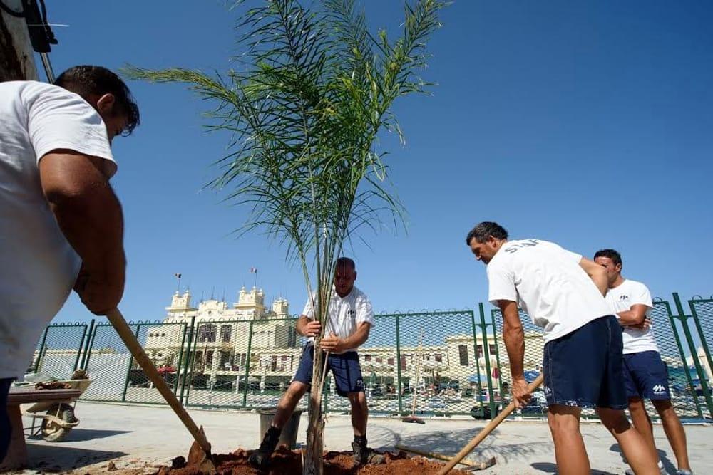 Legambiente, al via 100 alberi per la città di Catania