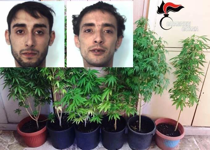 Catania, si fingono operai dell'Enel ma sono spacciatori: arrestati