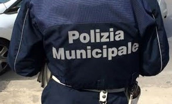 Randagismo a Modica: 462 interventi della Polizia locale dal 2017 ad oggi