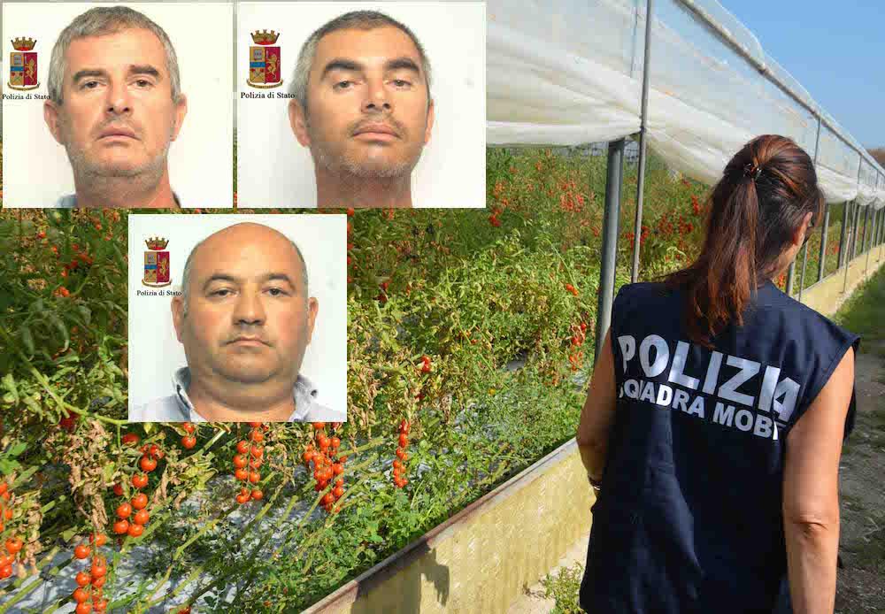 Caporalato: arresti e denunce a Ragusa, Siracusa e Agrigento