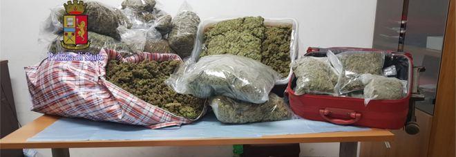 Droga: a Bologna sequestrati 105 chili di marijuana, un arresto