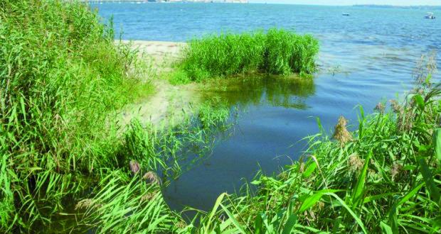 Goletta Verde, 15 aree inquinate in Sicilia, anche un tratto del Porto di Siracusa
