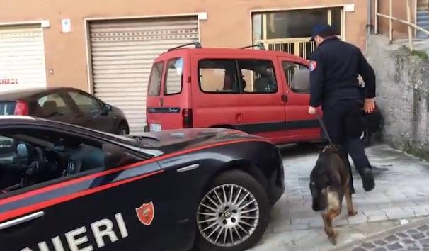 Operazione antidroga a Potenza, 36 persone arrestate
