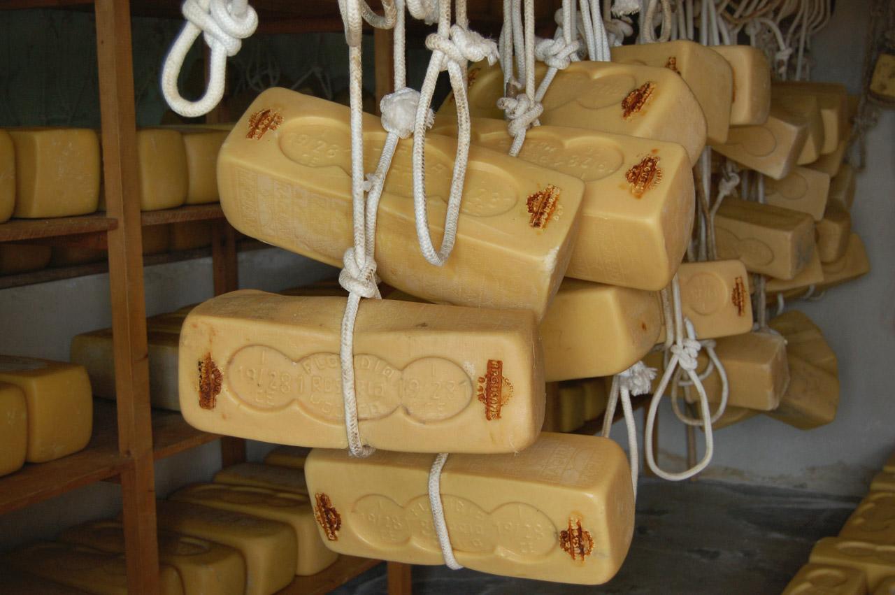 Il formaggio Ragusano Dop su Agrilinea.tv in diretta sabato 19 alle 10,30