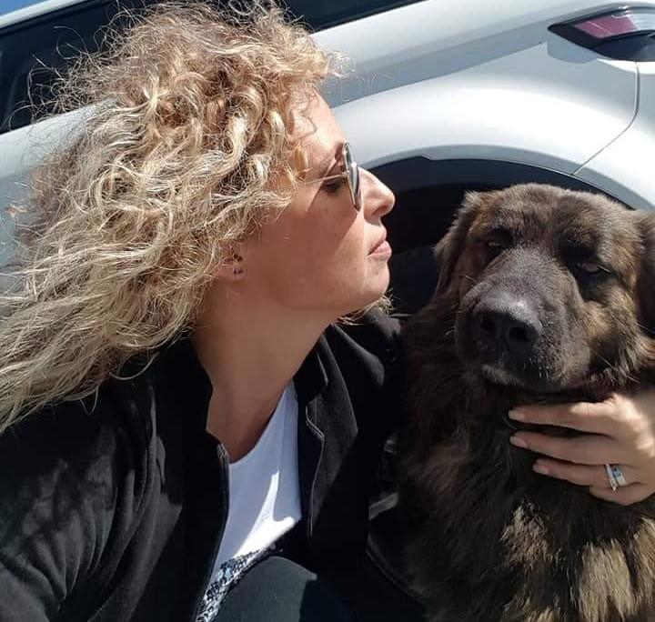 Ispica, movimento animalista: sconto sulla Tari a chi adotta un randagio