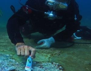 Archeologia subacquea, un corso di restauro a Palermo