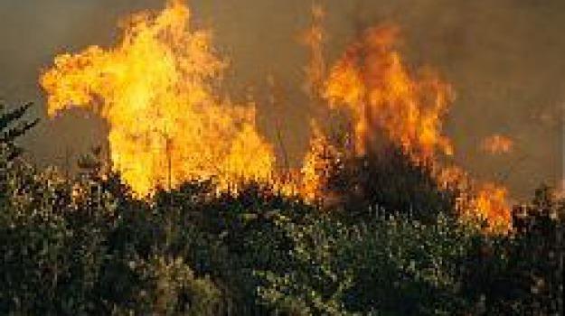 Alte temperature e vento di scirocco incendiano la provincia di Ragusa