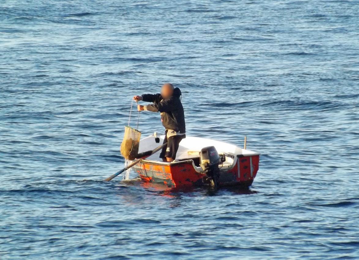 Augusta, bloccati pescatori di frodo: i ricci li gettano in mare