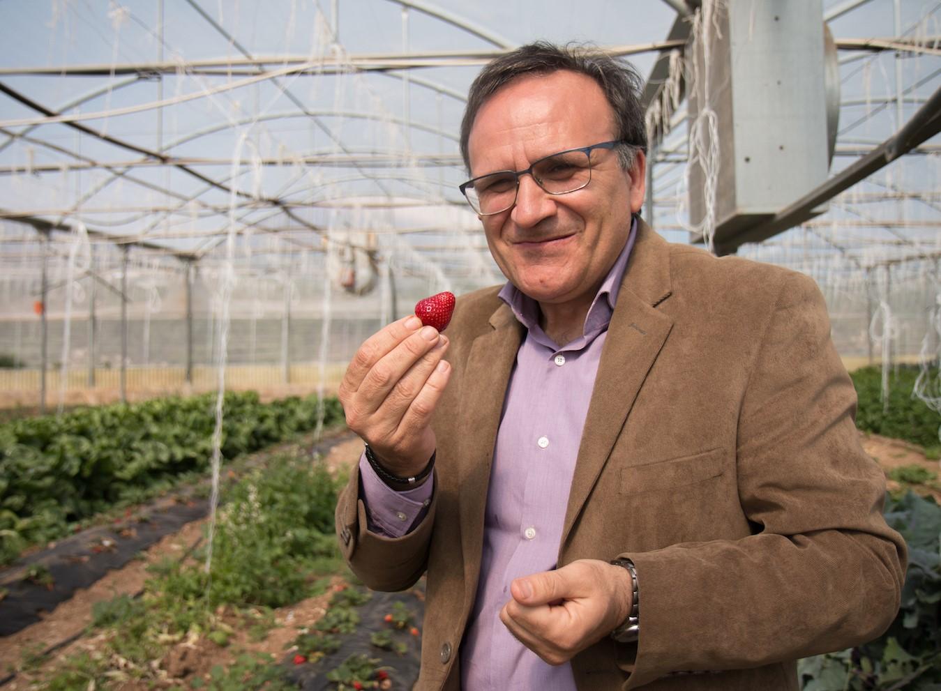"""Agricoltura, """"Natura Iblea"""" di Ispica azienda italiana con migliore welfare"""