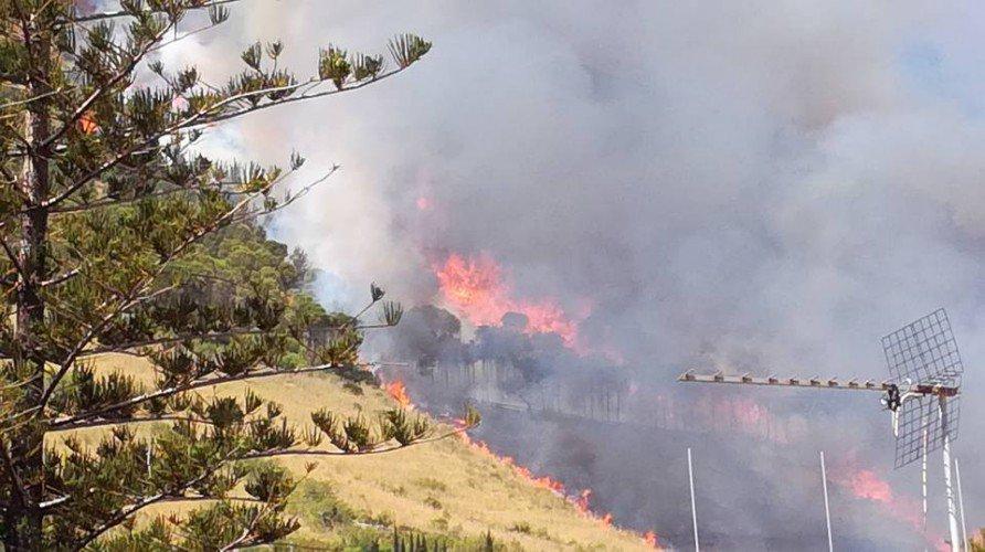 Incendi: lo scirocco sferza il Palermitano, domato un vasto rogo