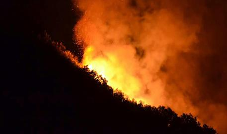 """Incendi, assessore di Ischia: """"I Comuni si organizzino con sentinelle"""""""