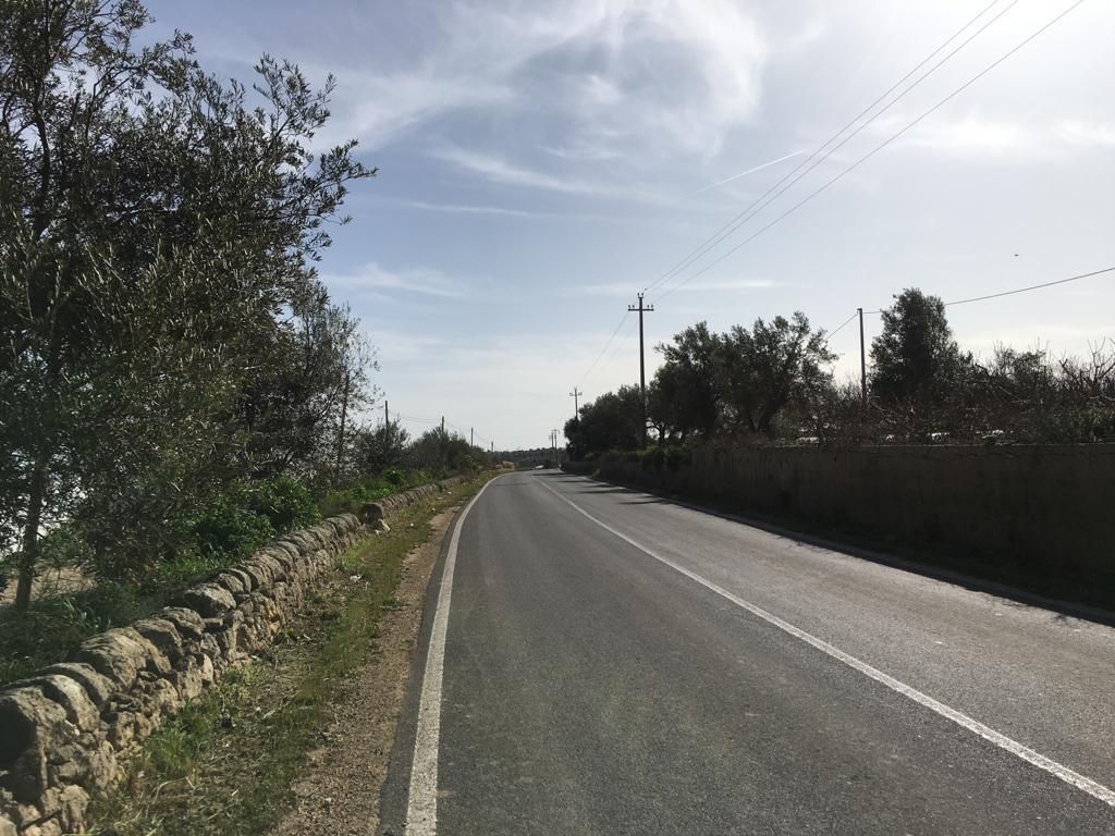 Rimosse le erbacce dalla  Provinciale Rosolini - Pachino