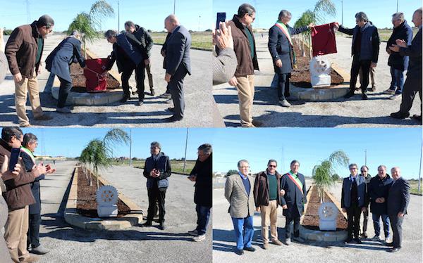 Il Rotary di Noto pianta alberi nell'area di Protezione Civile