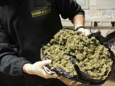Blitz nel Leccese, scoperti 8 quintali di marijuana proveniente dall'Albania