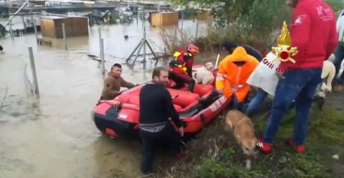 Catania, trovata sul letto che galleggiava: anziana salvata