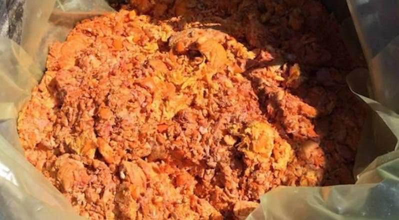 Lentini, sequestrati scarti di arance destinati a un allevamento di ovini