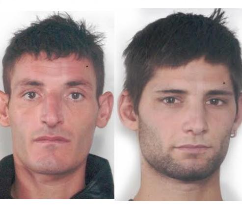Adrano, rubano 40 chili di castagne: arrestate quattro persone tra cui un minore