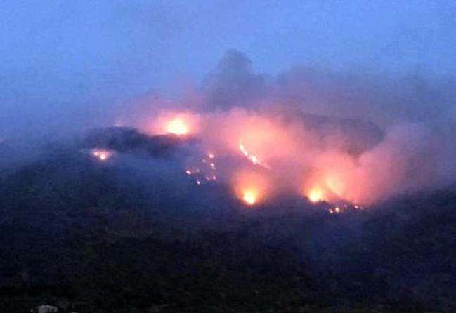 Spento il rogo che ha devastato Pantelleria per 4 giorni, ingentissimi i danni