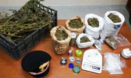 Catania, nascondeva in casa 2 chili di marijuana: ai domiciliari