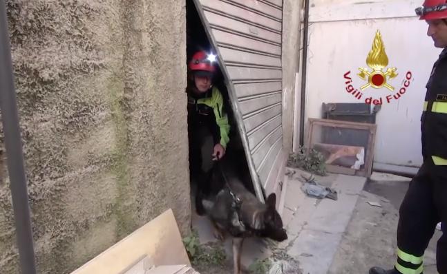 Palermo, crolla una palazzina all'Albergheria: non ci sono feriti