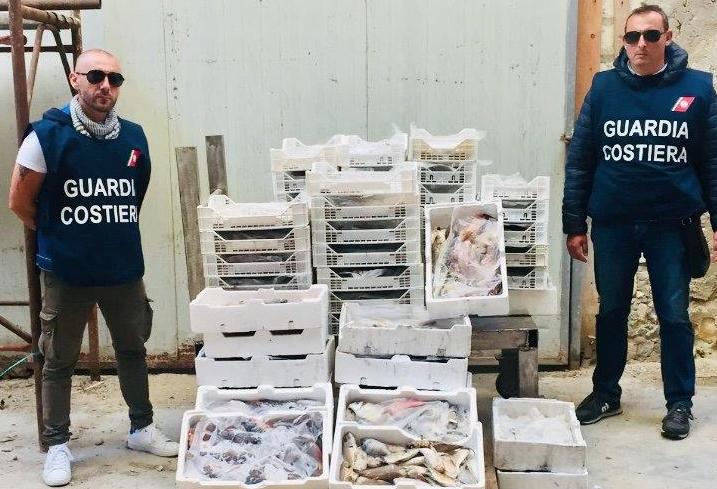Siracusa, la Guardia costiera sequestra 200 chili di pesce