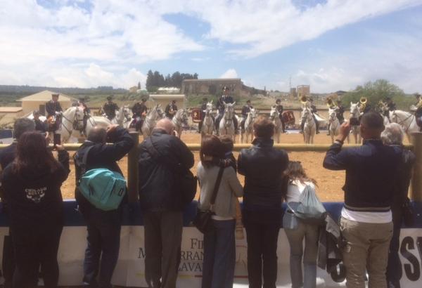 """Trentamila alla Fiera del cavallo, Musumeci:"""" Promuoveremo gli sport equestri"""" VIDEO"""